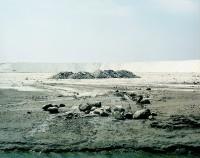 Edifice, montagne blanche - Tirage argentique - 80x100 cm - 2005