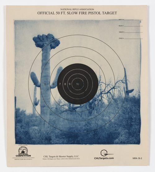 Fire Pistol Target 9, Désert de Sonora – Arizona