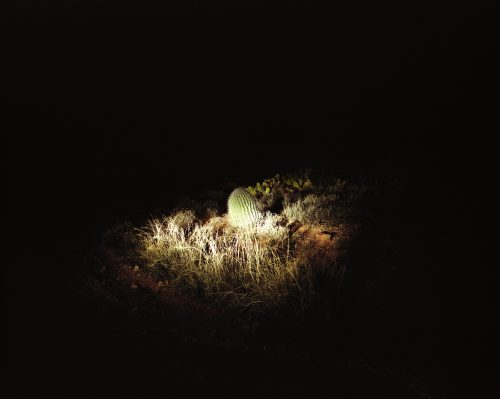 Nightwatch 1 - Arizona