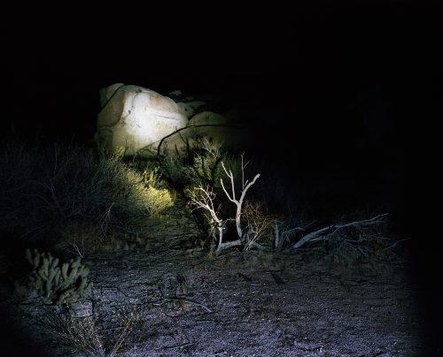 Nightwatch 2 - Californie