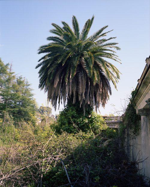 Lost paradise 4, Gagra